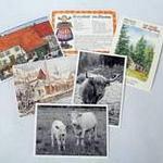 Cartes postales Alsace Bossue