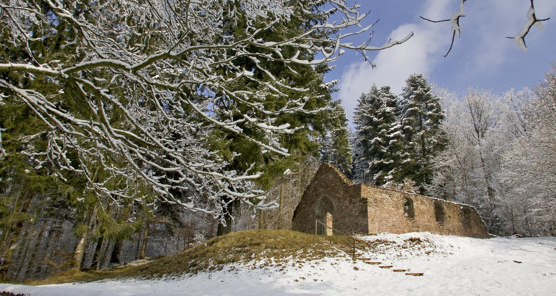 Vestiges de la Heidenkirche (forêt de Butten)