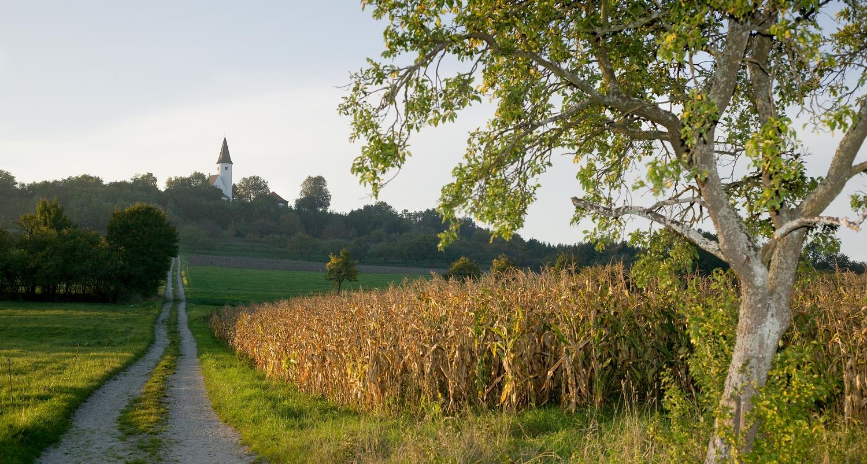 La chapelle du Kirchberg domine l'Alsace Bossue
