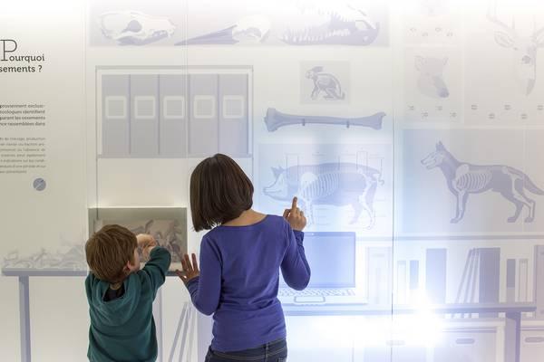 Visitez La Villa, centre d'interprétation du patrimoine archéologique à Dehlingen